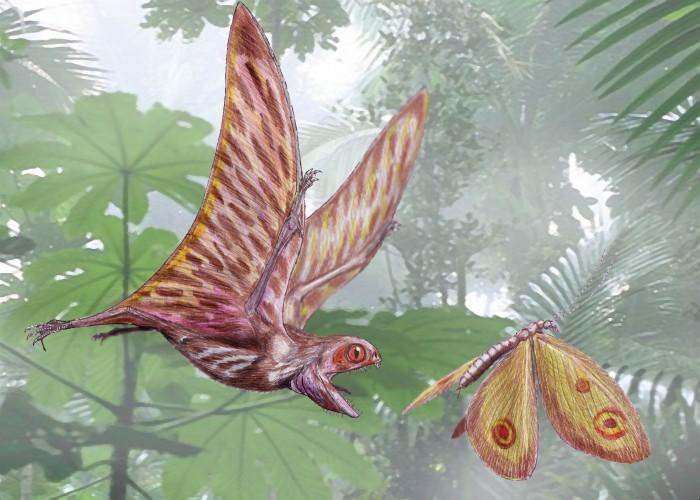 Påskemysteriet: Hva skjedde med giga-insektene?
