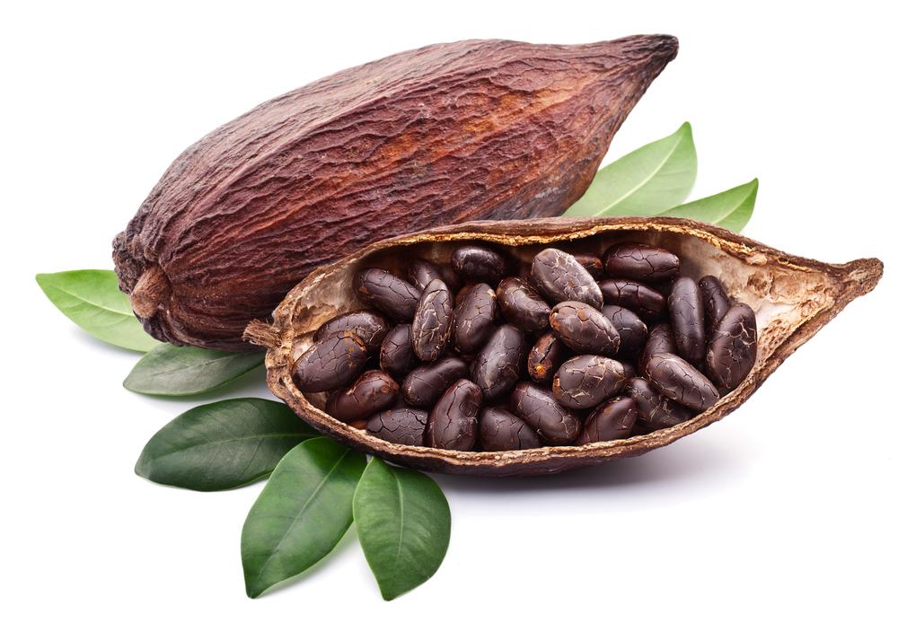 Inne i kakaofruktene ligger kakaobønnene, som fermenteres (gjæres) og tørkes før de sendes til sjokoladefabrikken. Foto: Shutterstock