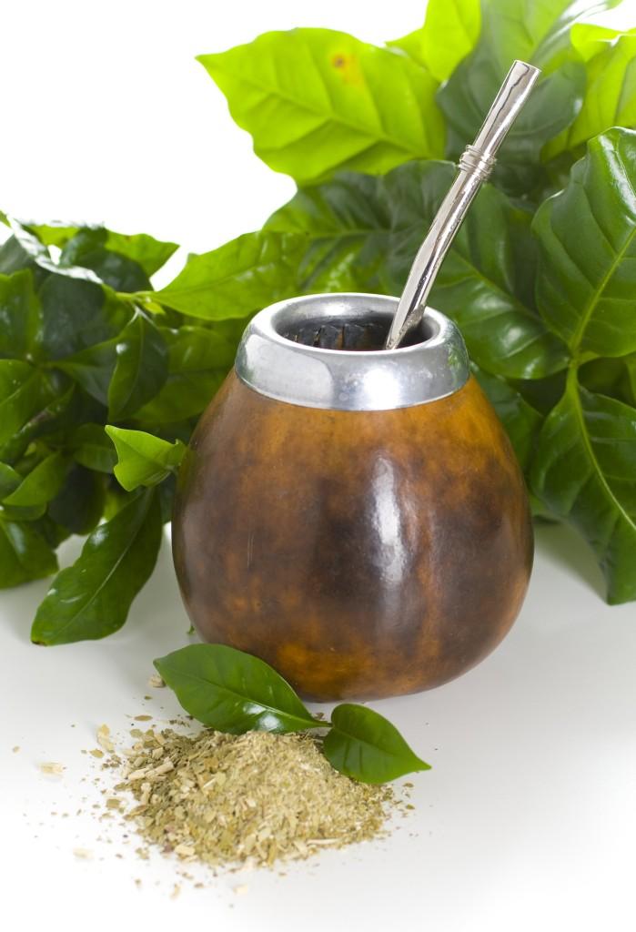 Yerba mate er en plante fra Sør-Amerika som brukes til å lage en type te som kalles mate. Foto: Shutterstock