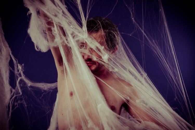 Sex og silkekjoler – om edderkoppers spinnville liv