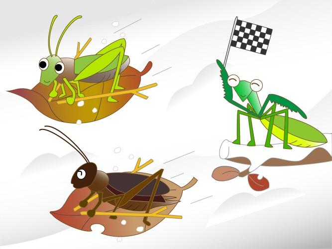 Hvor er insektene om vinteren?