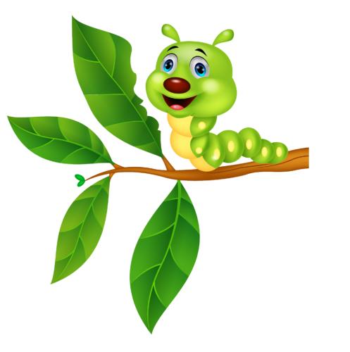 Spiser insekter mer planter i en varmere verden?