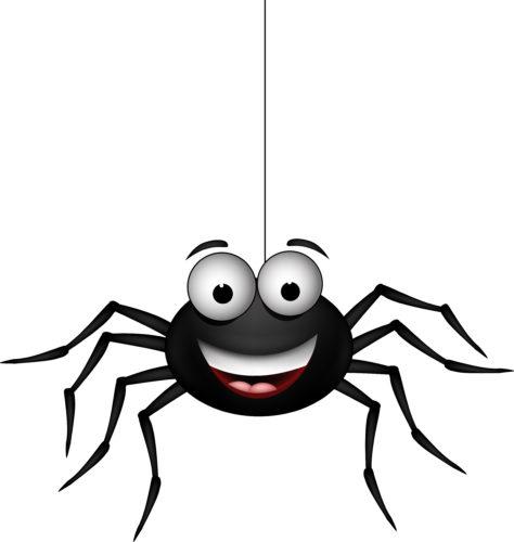 Redd for edderkopper? Slapp av - det er ikke din skyld