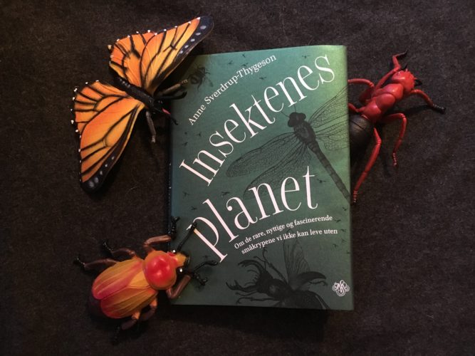 Insektenes planet – om ord, blogging og bok