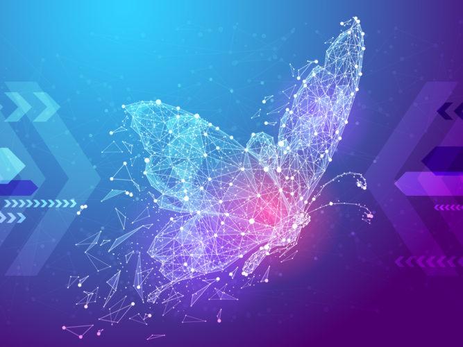 Insektenes sosiale nettverk; lik og del!