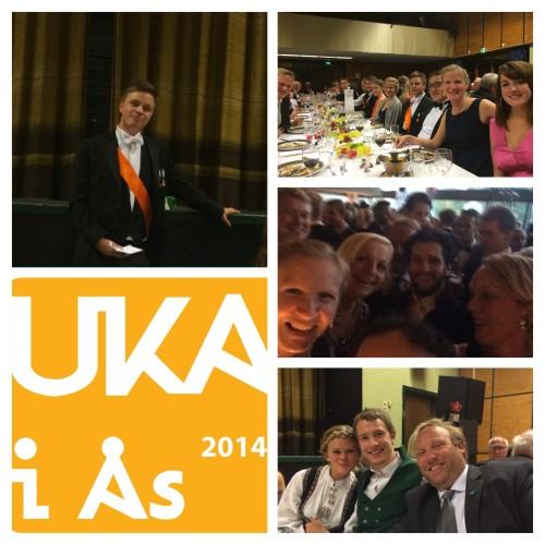 UKA 2014 Urpremiere