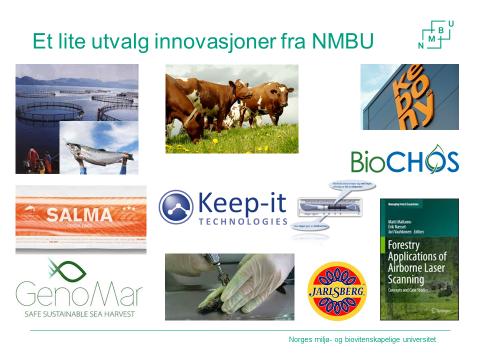 Innovasjoner NMBU