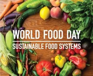 11.11.13 bilde blogg FN og mat