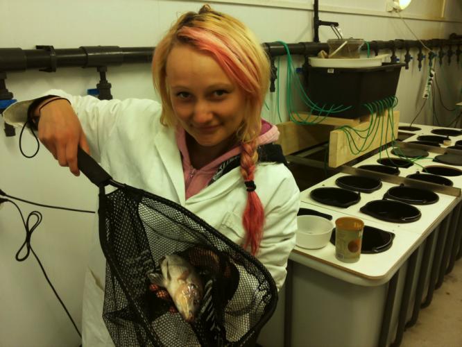Master i akvakultur - spennende utdannelse med gode jobbmuligheter!