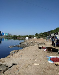 Mithi riverbank. Photo: Hans Adam.