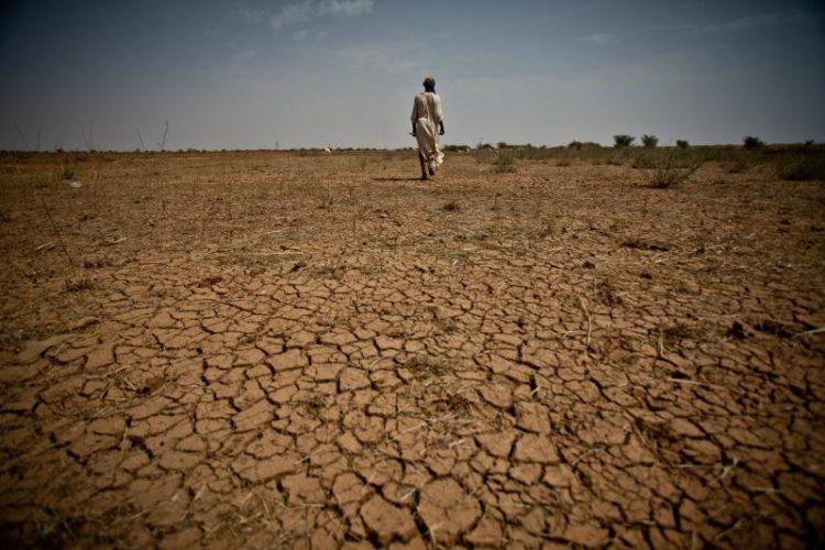 The crisis around Lake Chad