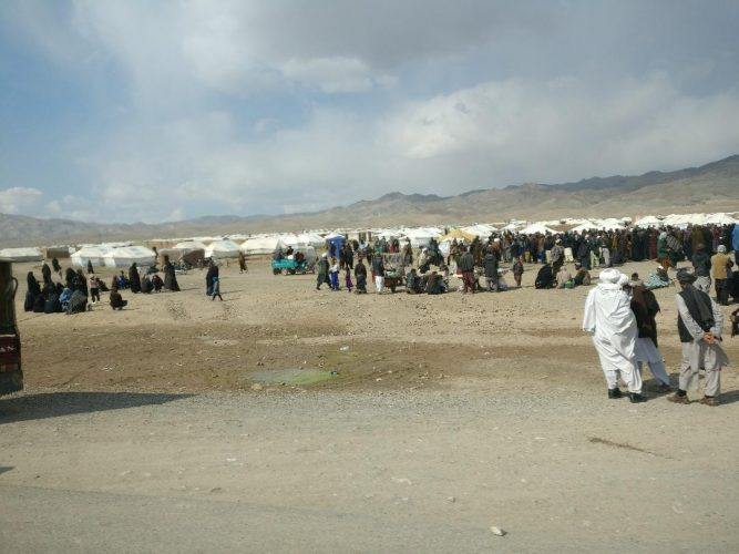 Is cooperation with the Taliban a recipe for disaster or a new way forward?