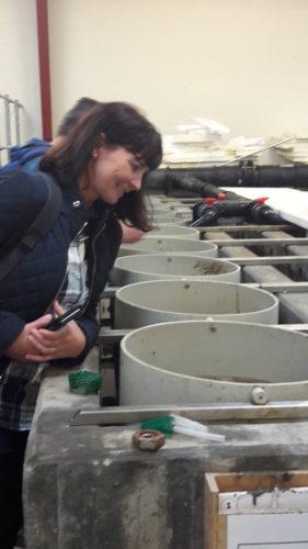 Forskingsleiarar på tur med akvakulturforvaltninga