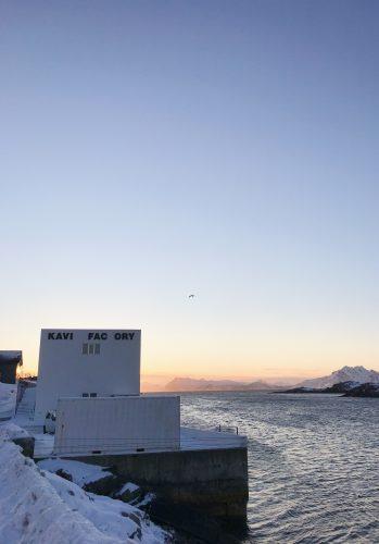 Studietur til Lofoten: en beretning fra turistfiskebedriftsbesøk i kystsonen