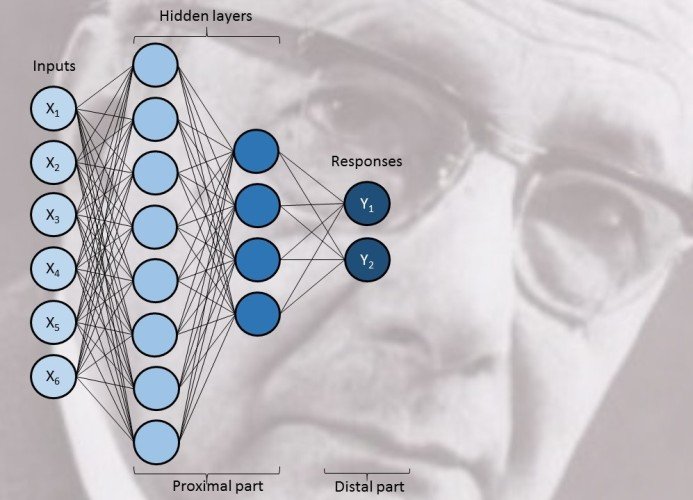 Polanyi and the neural networks